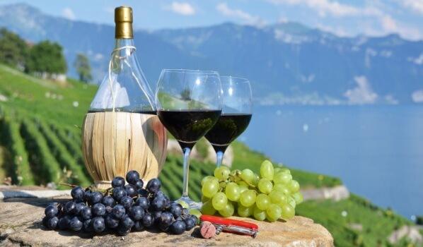 Вино Пьемонт