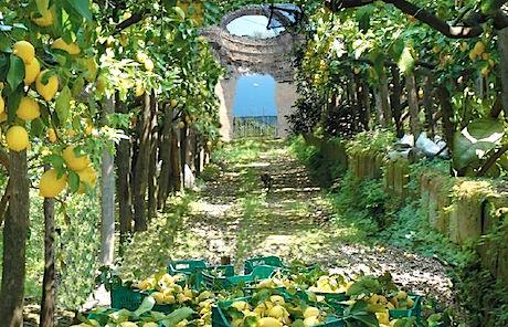 Sicilia giardino-di-limoni