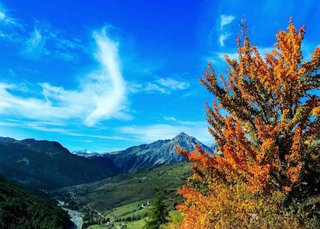 Осень в Пьемонте, доступная поэзия вкрасках