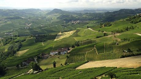 Piemonte la Morra pixabay.jpg