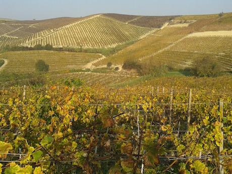 Piemonte paesaggio pixabay.jpg