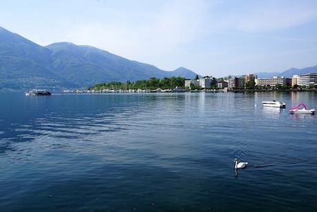 Lago Maggiore.jpg